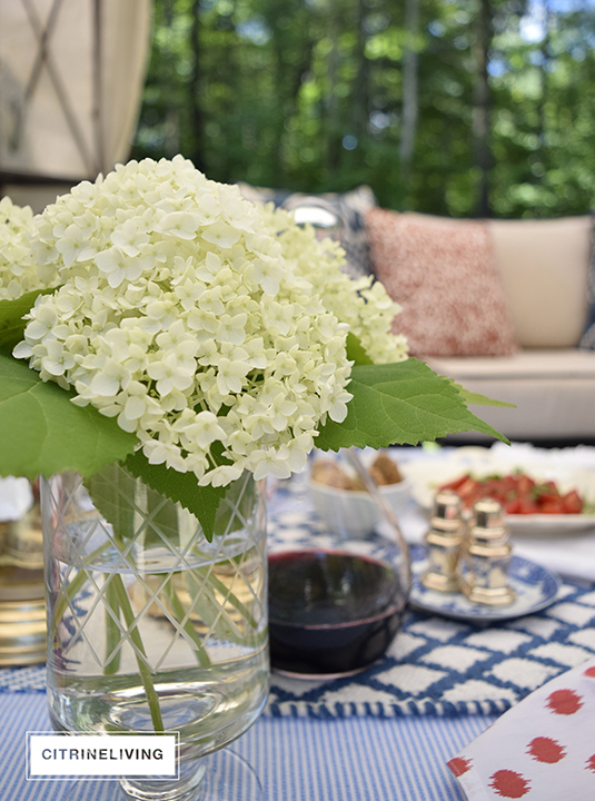 CITRINELIVING : SUMMER ENTERTAINING FOR TWO