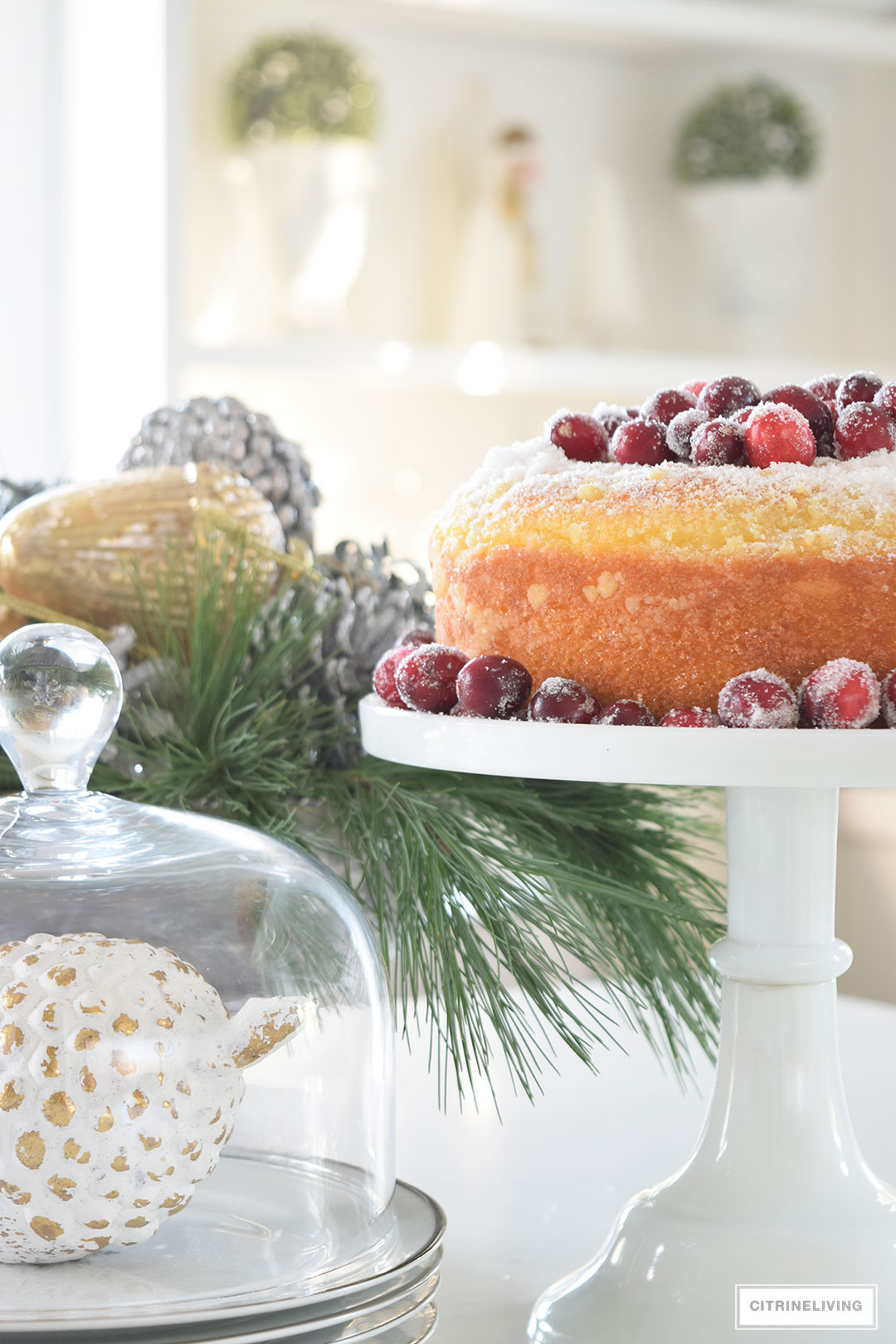 kitchen-christmas-dessert-sugared-cranberries4