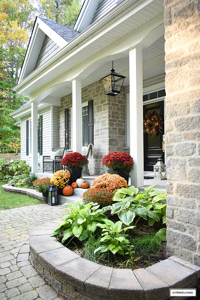 Beautiful fall front porch with lush, colourful mums, scattered pumpkins and a gorgeous wreath welcomes guests for the season.