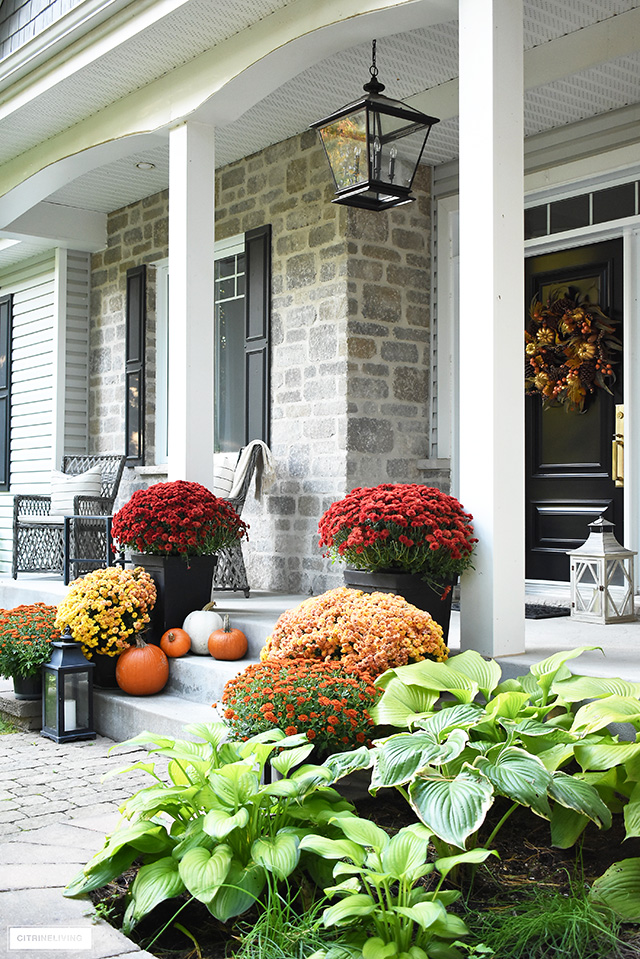 Gorgeous fall front porch with vibrant-hued mums, lanterns and pumpkins. Oversized lantern style pendant light makes a bold statement.
